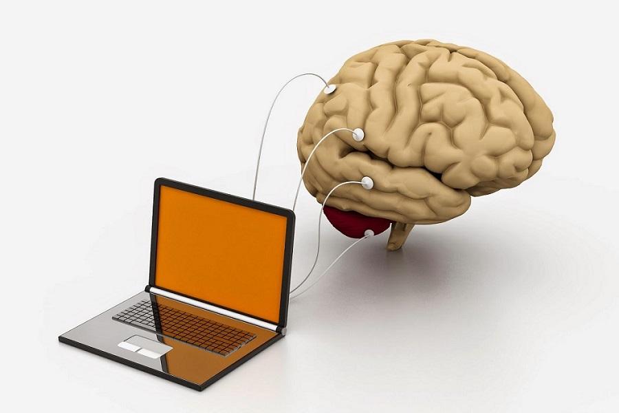 نوروفیدبک و تمرین مغز
