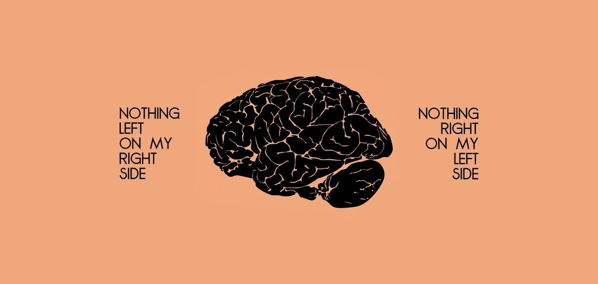 نقشه مغزی